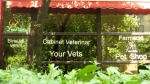 Cabinet veterinar Your Vets