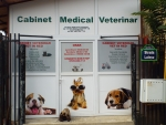 VET IN RED